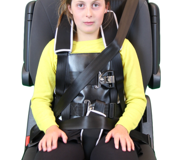 Car Harnesses For Kids Wiring Diagram Files